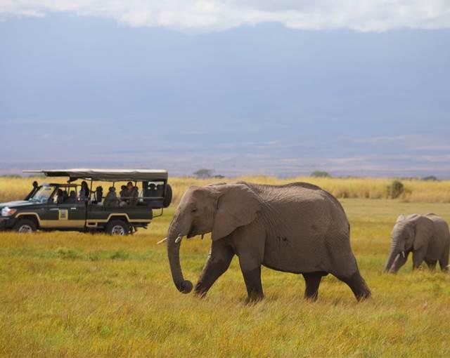 Tortilis Camp Amboseli