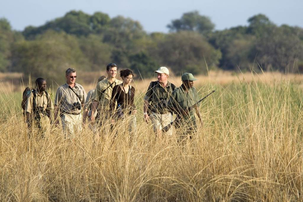 South Luangwa Park Safari