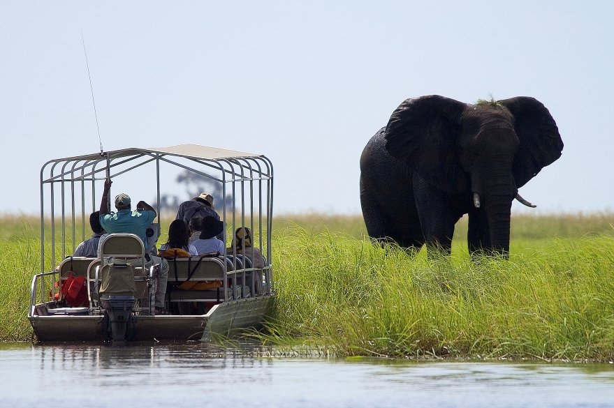 7 Day Classic Botswana Safari
