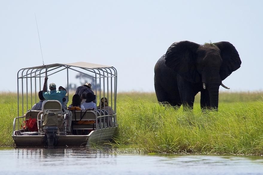 7 Day Classic Botswana Safari