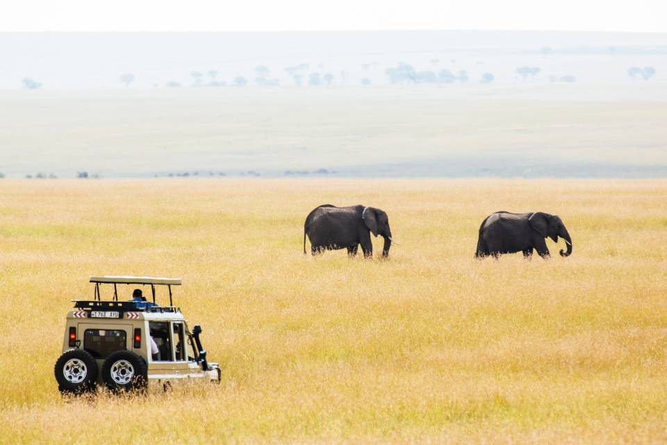 6 Day Luxury Tanzania Safari