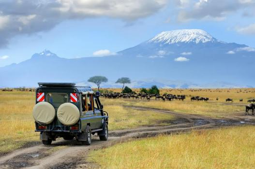7 Day Kenya Safari Royale