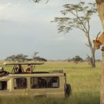 serengeti safari cost and prices