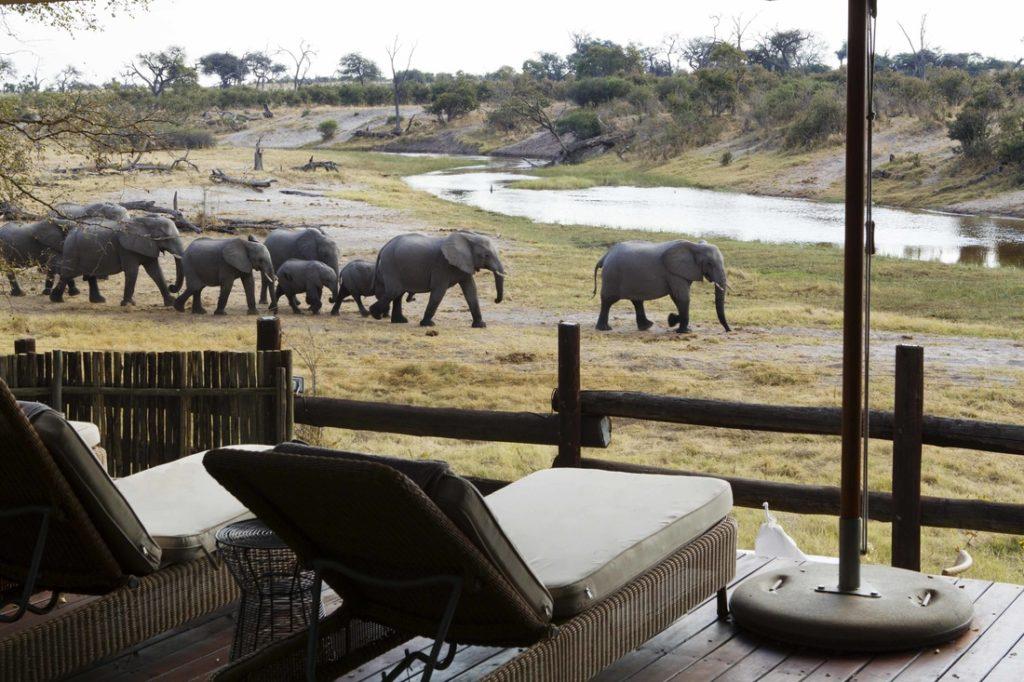 Savute Safari Lodge
