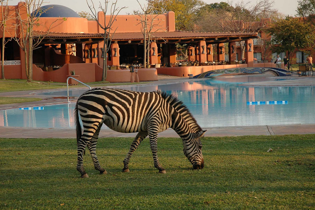 Avani Vic Falls Resort