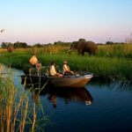 okavango delta safari tours