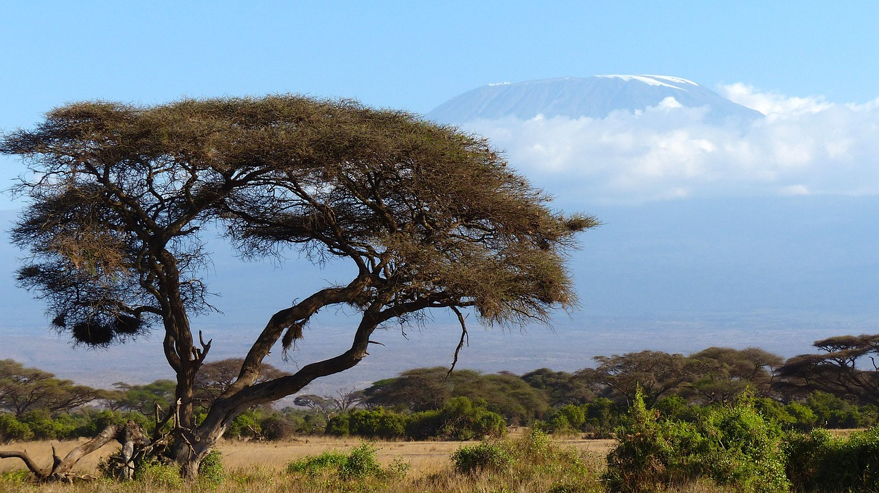 views of mount kilimanjaro climbing