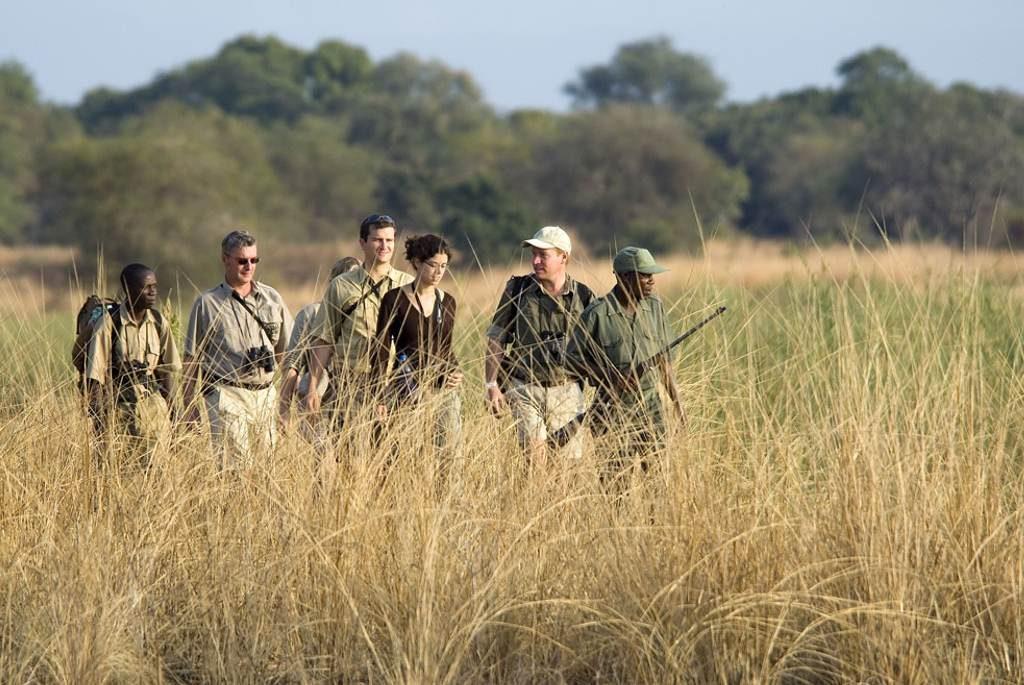 South Luangwa Park Safari