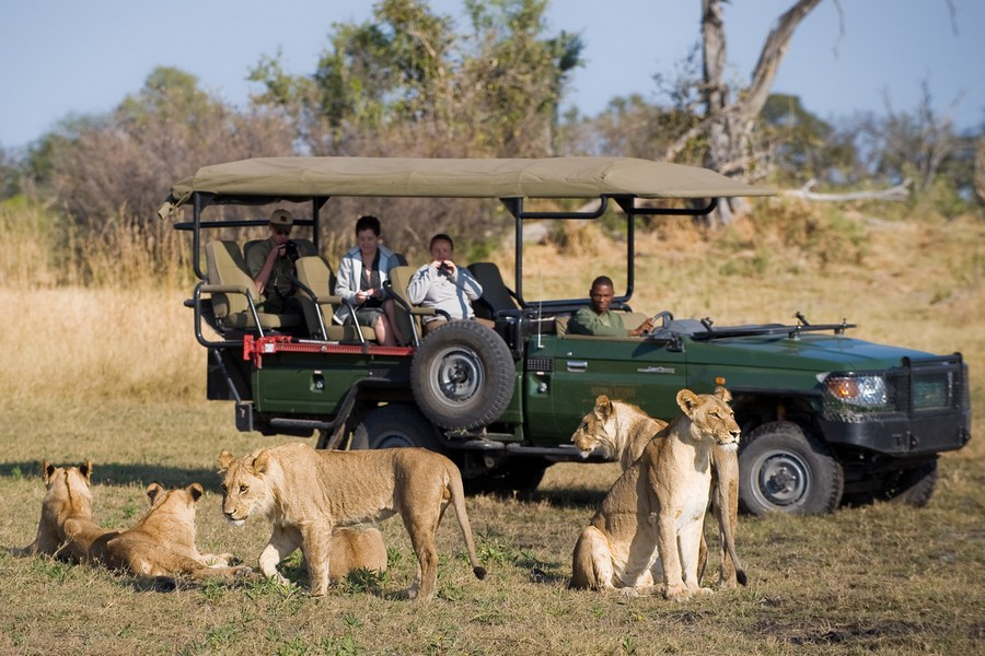 9 Day Kruger & Mara Safari