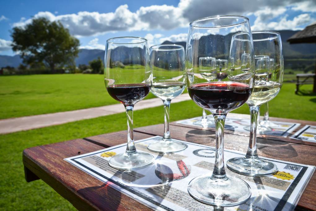 5 Day Cape Town & Wine Tour