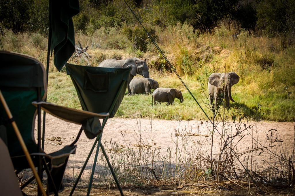 4 Day Fly In Ruaha Park Safari