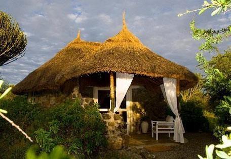Mbweha Lodge